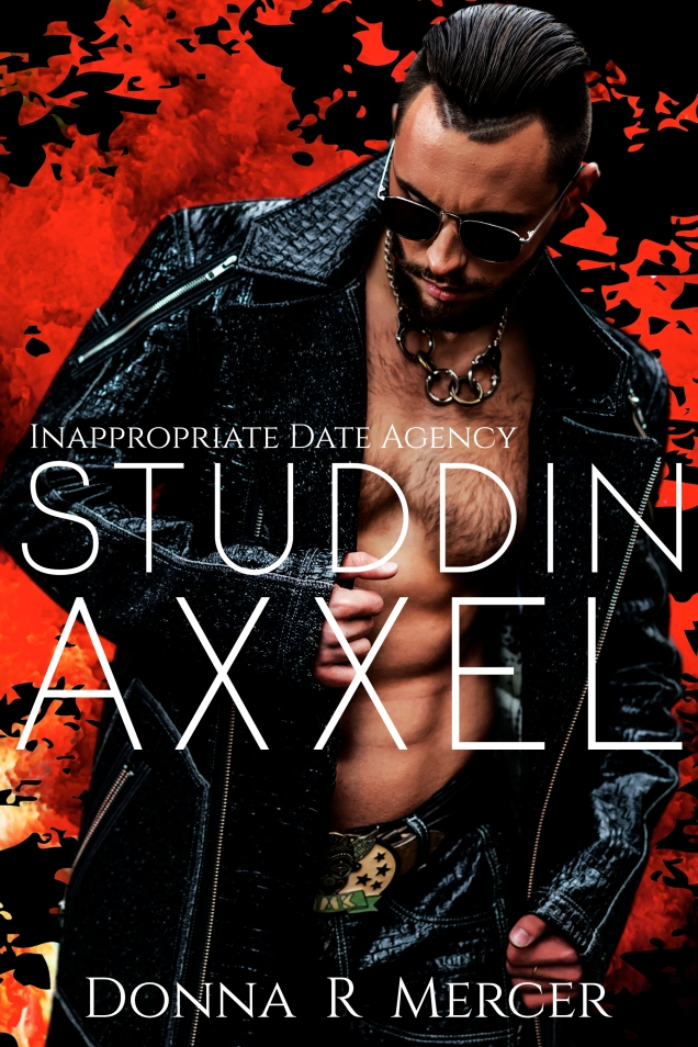 Studdin Axxel Ebook